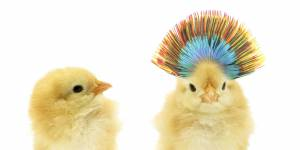 7 façons simples de garder un maximum de cheveux sur la tête