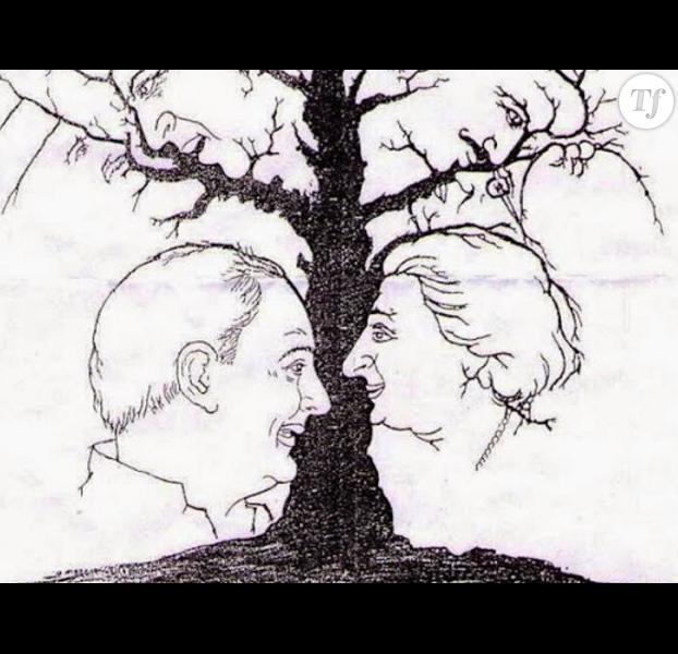 Saurez vous d tecter combien de visages contient cette for Combien coute un elagage d arbre