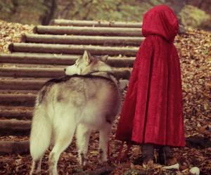 Les contes de fées remonteraient à la préhistoire