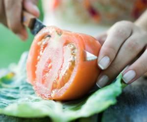 Faire pousser un plant de tomates à partir d'une rondelle, c'est possible