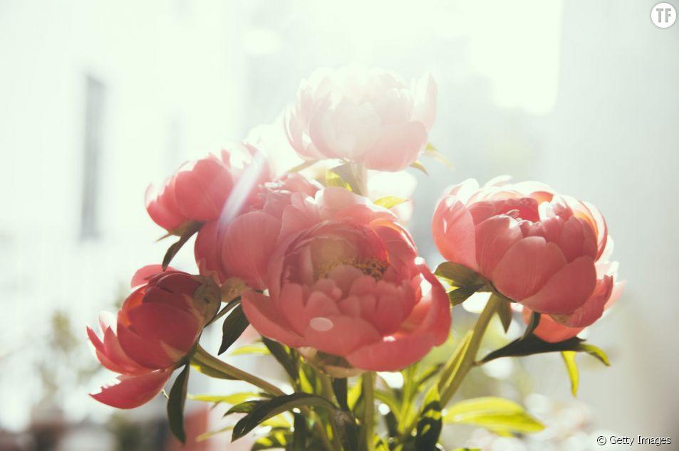 Nos conseils pour conserver plus longtemps un bouquet de fleurs fraîches