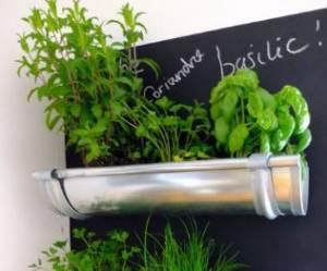 8 jolies idées de petits jardins intérieurs dénichées sur Pinterest