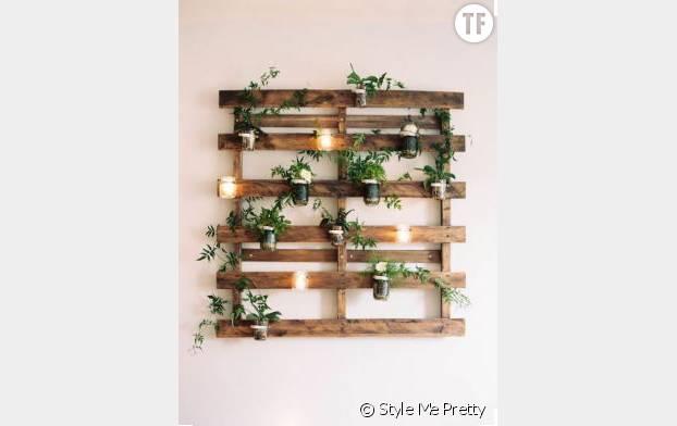 Une palette de plantes
