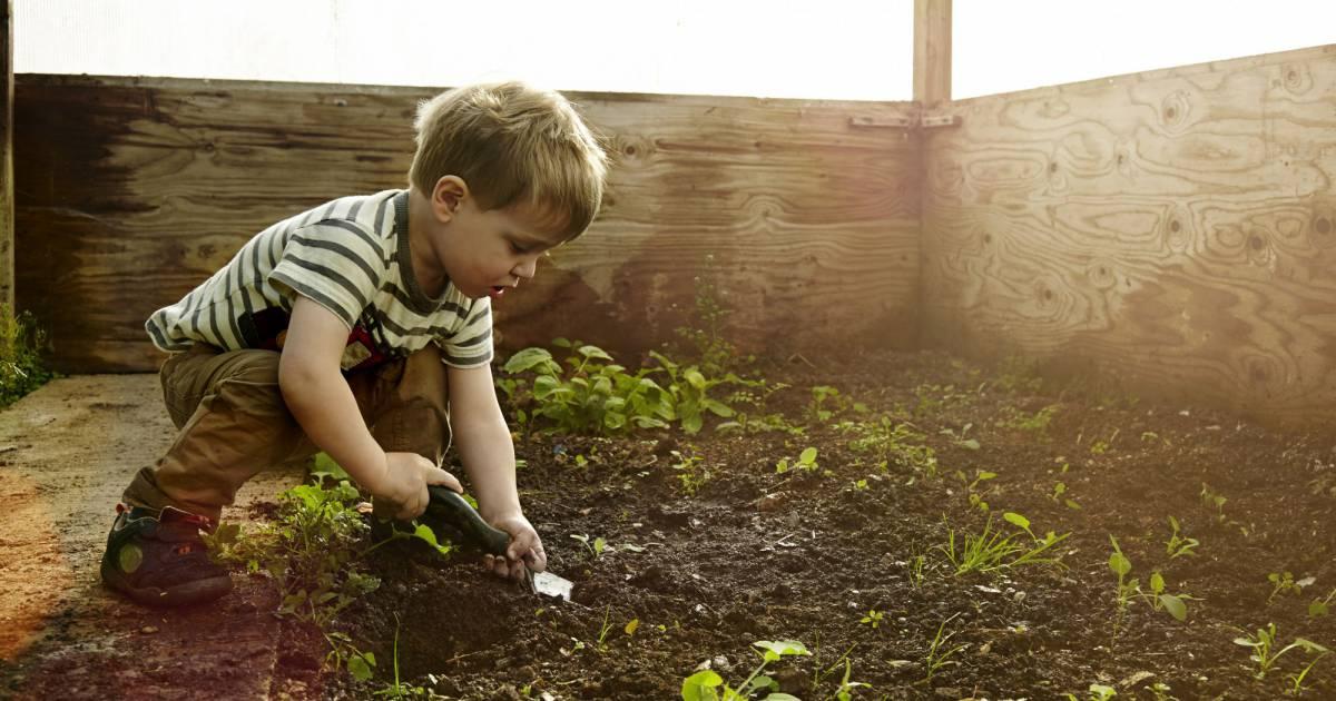 voici le kit de jardinage pour enfants pour faire pousser. Black Bedroom Furniture Sets. Home Design Ideas