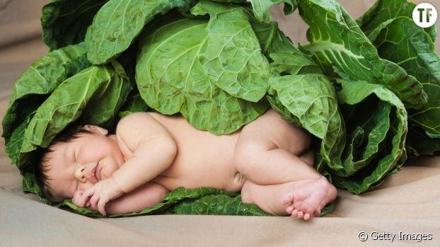 Un nouveau-né dans des feuilles de chou