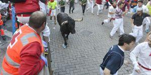 Pourquoi je serai à Pampelune contre la mise à mort des taureaux