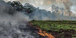 #PrayForAmazonia : les internautes s'indignent contre l'indifférence générale