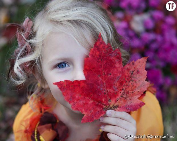 Que faire avec des feuilles d'arbre ?
