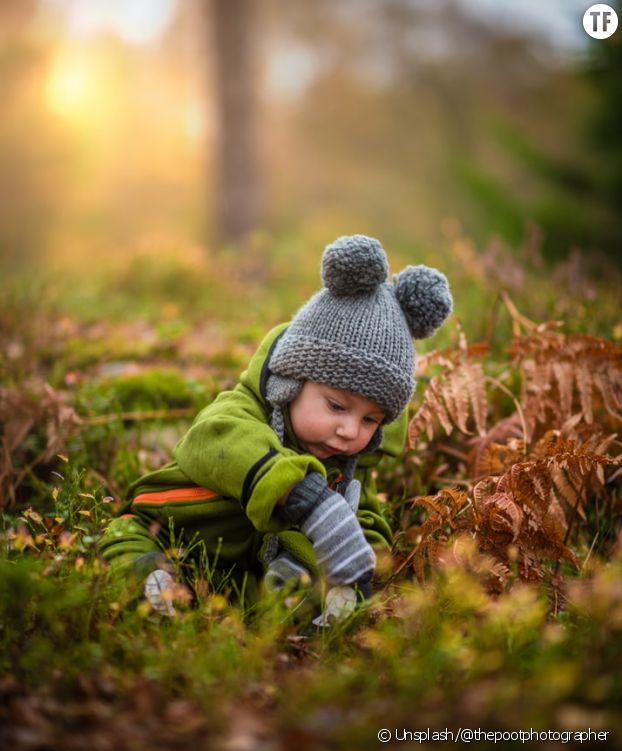 Balade en forêt avec des enfants