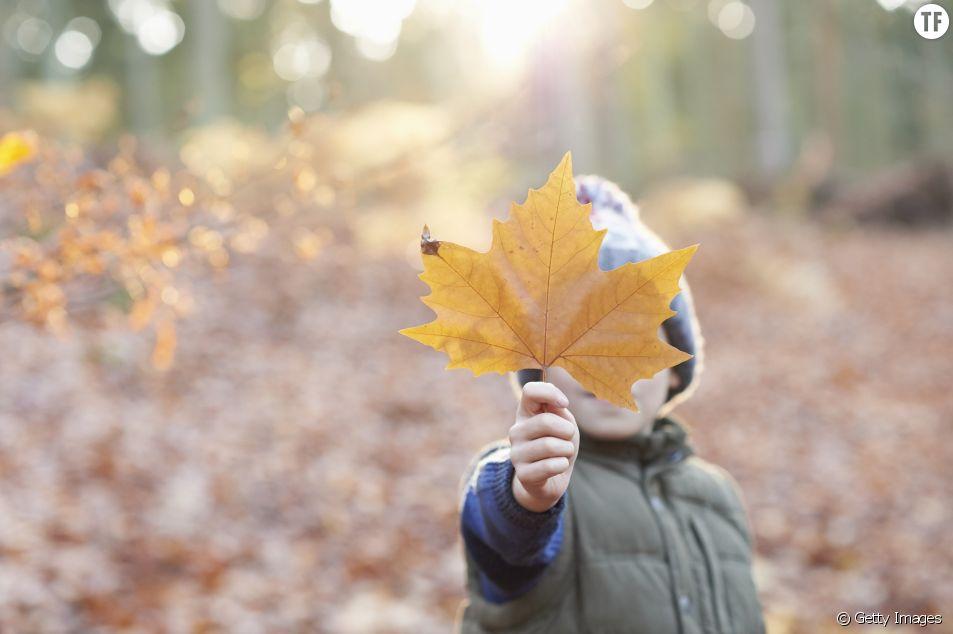 Idées d'activités avec des enfants en automne