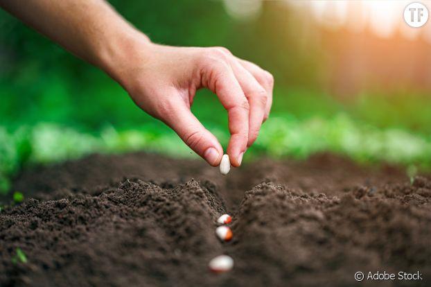 Acheter local et cultiver ses propres produits autant que possible.