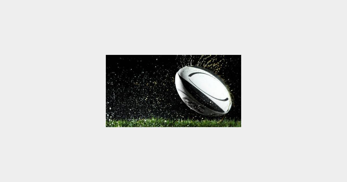 Match rugby irlande vs france en direct live streaming sur - Coupe de france en direct sur internet ...