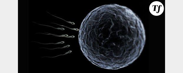 Découverte d'une nouvelle cause d'infertilité masculine