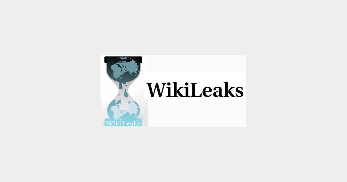 Wikileaks de la fuite dans les id es terrafemina for Fuite dans les wc