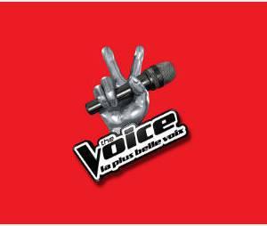 The Voice 2014 : inscriptions au casting de la saison 3 sur TF1