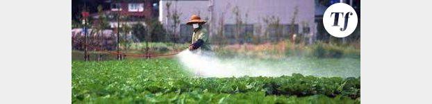 Japon: la liste des aliments radioactifs