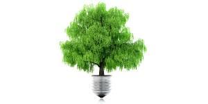 La biodiversité, nouveau moteur pour les entreprises