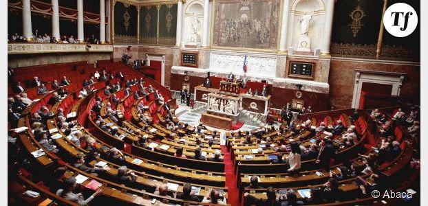 Mariage gay à l'Assemblée : tensions et dérapages dans l'Hémicycle