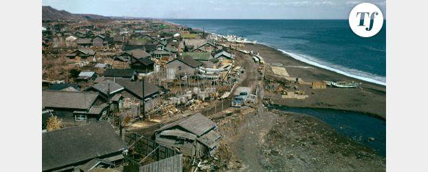 Japon : le bilan atteint 27 000 morts et disparus