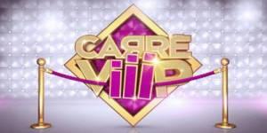 Carré Viiip: TF1 arrête la diffusion de l'émission de téléréalité d'Endemol