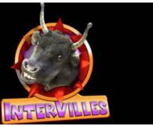 Intervilles : Eve Angéli, Christian Califano, Anne Bernex et Taïg Kris seront les coachs