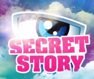 Secret Story 8 : inscription au casting de la saison 2014 ?