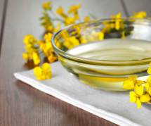 Huile de colza : l'allié forme de vos recettes gourmandes