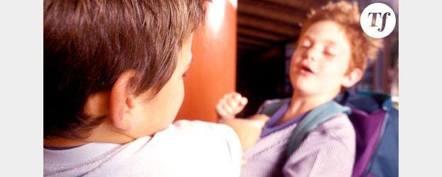 Quinze propositions pour lutter contre le harcèlement scolaire