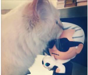 Karl Lagerfeld : sa chatte Choupette en interview dans le magazine Gala