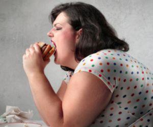 Obésité et anorexie : un simple anticorps qui dérègle l'appétit ?