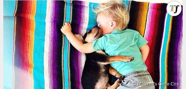 Theo et Beau : les siestes à croquer d'un petit garçon et son chiot - photos