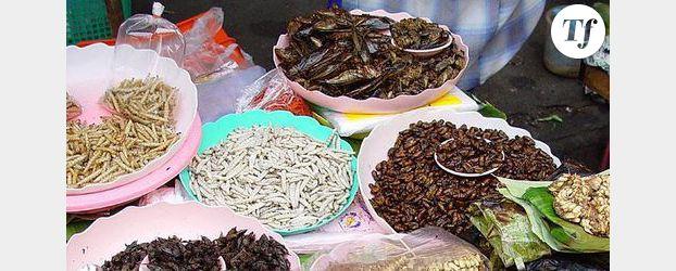 Les insectes, une solution contre la malnutrition au Laos?