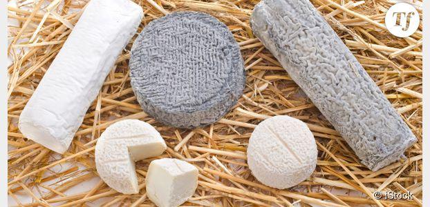 Pénurie de fromage de chèvre : le prix du chabichou s'envole