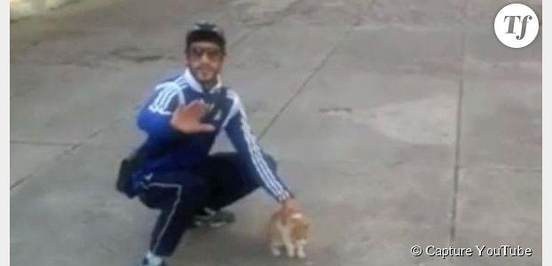 Farid Ghilas de la Morlette : le tortionnaire de chat condamné à 1 an de prison ferme