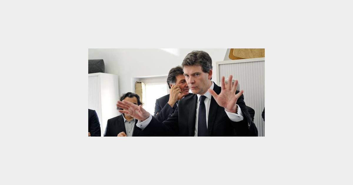 arnaud montebourg et elsa zylberstein le ministre porte. Black Bedroom Furniture Sets. Home Design Ideas