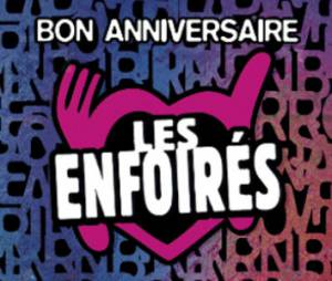 Enfoirés 2014 : le concert en direct et sur TF1 Replay