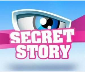"""""""Secret Story 5"""" : Benjamin Castaldi de retour sur TF1 à partir du 8 juillet"""