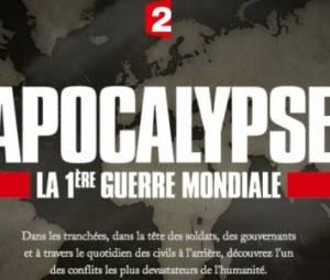 """""""Apocalypse, la 1ère guerre mondiale"""" s'invite dans On n'est pas couché - replay France 2"""