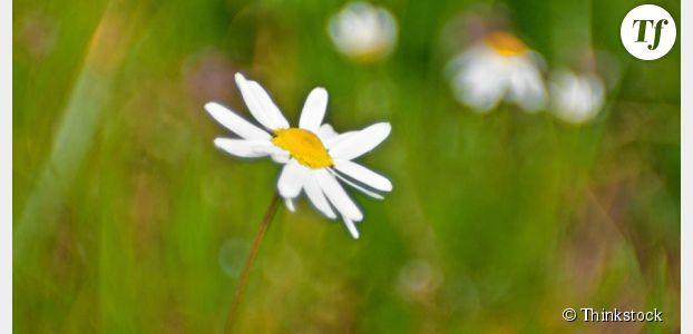 Détox de printemps : 11 conseils pour se sentir mieux dans son corps