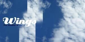 « Wings », la première vente aux enchères en plein ciel