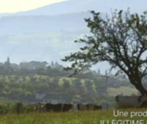 Allergies : dangers et solutions sur France 5 Replay