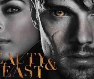 Beauty and The Beast : une saison 3 plus courte pour Kristin Kreuk et Jay Ryan