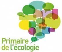 Primaires écologistes : vers le sacre d'Eva Joly