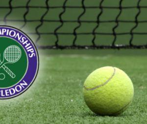 Wimbledon 2014 : Djokovic vs Simon en streaming (27 juin)