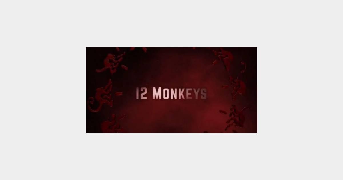armée douze singes