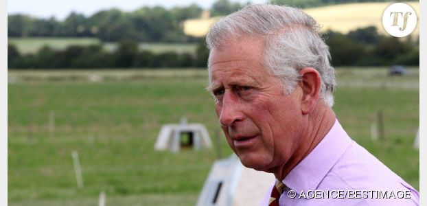 On Duty of the Queen : le livre qui rend le prince Charles furieux