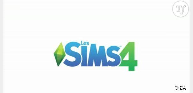Sims 4 : bug et problème de flou avec des pixels, comment faire ?