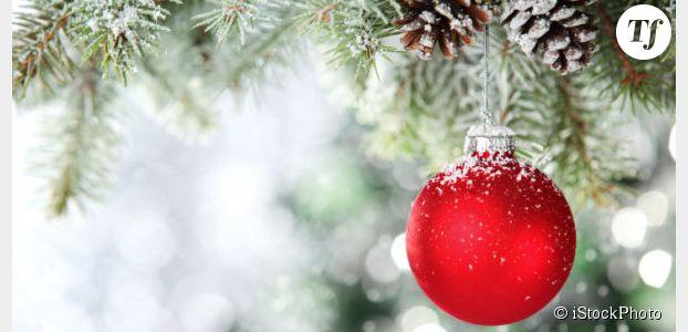 Noël 2014 : bons plans pour des sapins pas chers (Ikea, Truffaut, Jardiland, Botanic…)