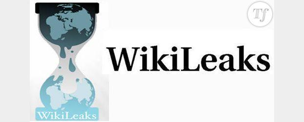 Wikileaks : que cache le mystérieux fichier crypté ?