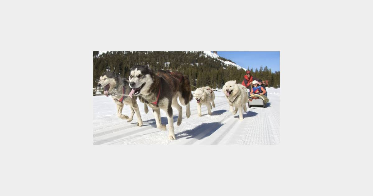sports d 39 hiver 8 alternatives au ski pour s 39 clater la montagne terrafemina. Black Bedroom Furniture Sets. Home Design Ideas